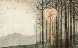 Tristan et Iseult by Anne Jonas (Auteur) Anna et Elena Balbusso (Illustrateurs)