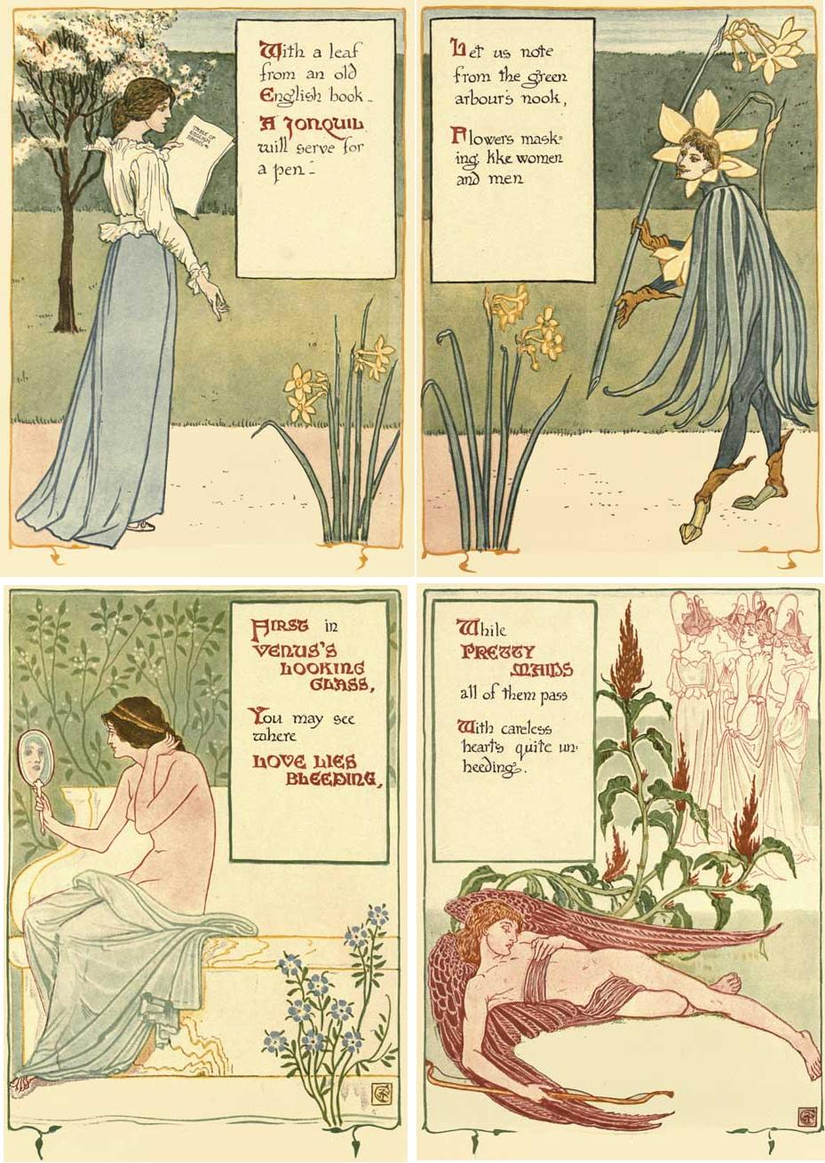 Jonquil,VENUS'S LOOKING GLASS,LOVE LIES BLEEDING,PRETTY MAIDS